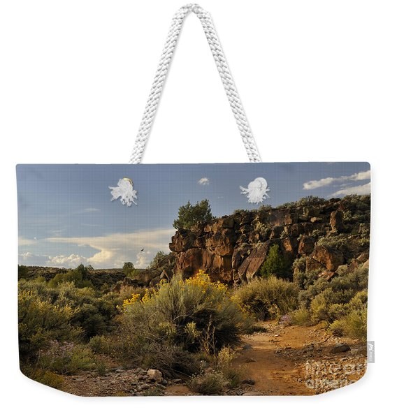 Weekender Tote Bag featuring the photograph Westward Across The Mesa by Ron Cline