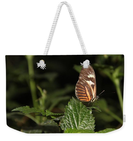 What Is My Next Step Weekender Tote Bag