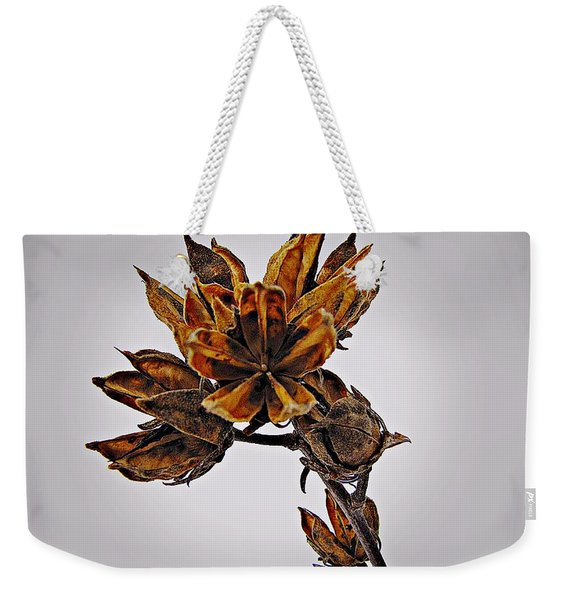 Winter Dormant Rose Of Sharon Weekender Tote Bag