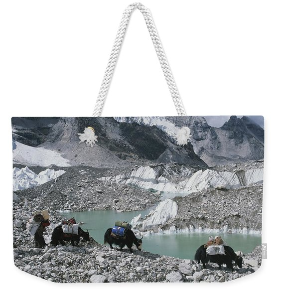 Yak Herders Cross A High Pass Weekender Tote Bag