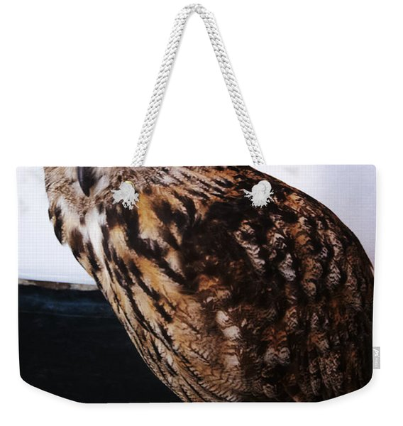 Yellow-eyed Owl Side Weekender Tote Bag