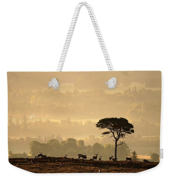 Autumn Morning, Strathglass Weekender Tote Bag