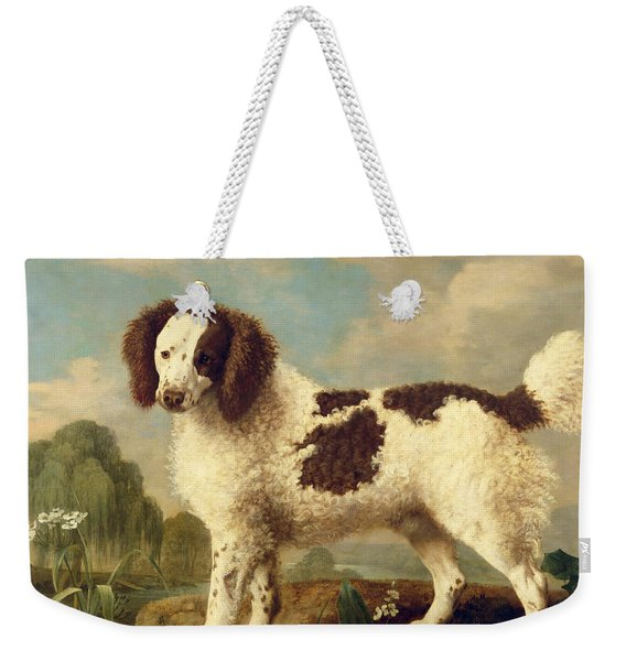 Brown And White Norfolk Or Water Spaniel Weekender Tote Bag