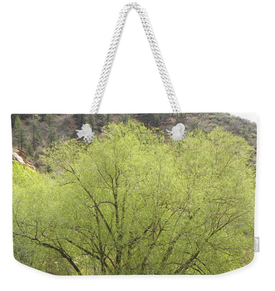 Weekender Tote Bag featuring the photograph Tree Ute Pass Hwy 24 Cos Co by Margarethe Binkley