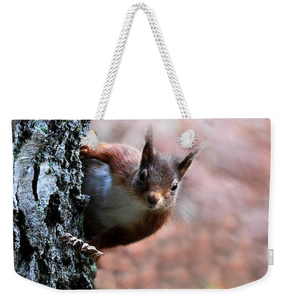 Red Squirrel Weekender Tote Bag