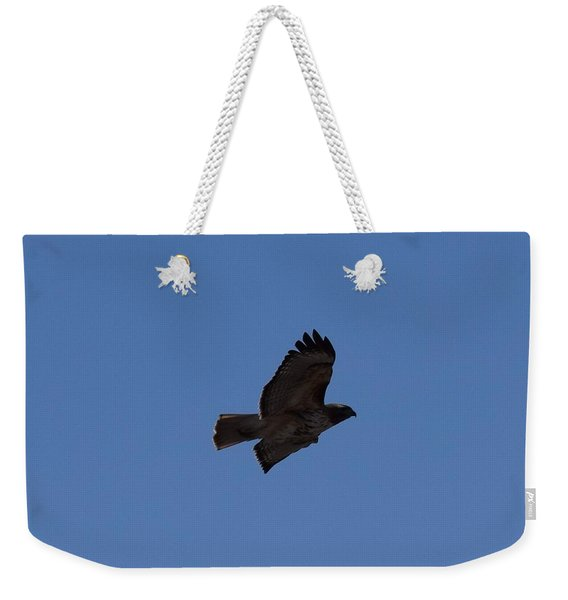 Weekender Tote Bag featuring the photograph Red Tail Hawk Male Tower Rd Denver Co 0898 by Margarethe Binkley