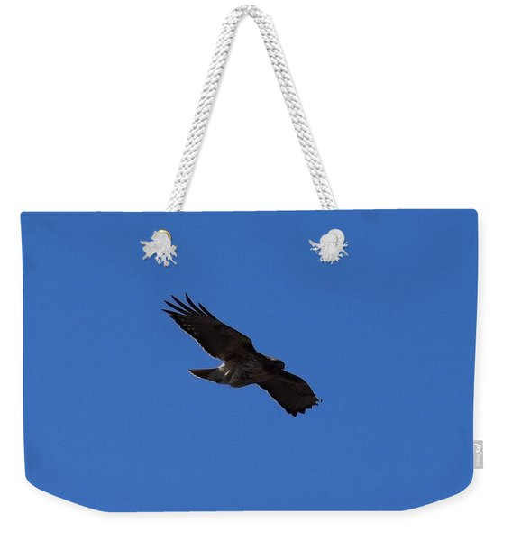 Weekender Tote Bag featuring the photograph Red Tail Hawk Male Tower Rd Denver by Margarethe Binkley