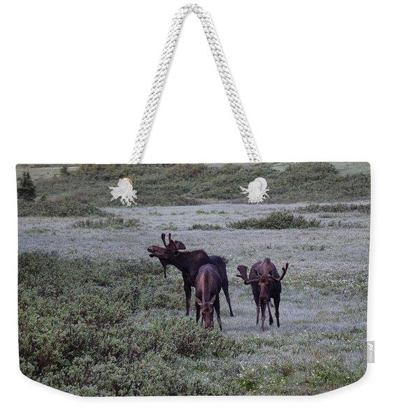 Moose Cameron Pass Co Weekender Tote Bag
