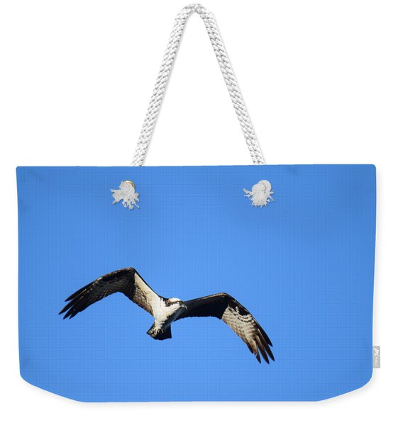 Weekender Tote Bag featuring the photograph Osprey Burgess Res Divide Co by Margarethe Binkley