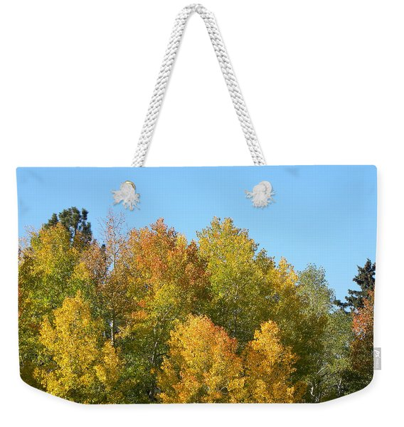 Weekender Tote Bag featuring the photograph Fall In Divide Co by Margarethe Binkley