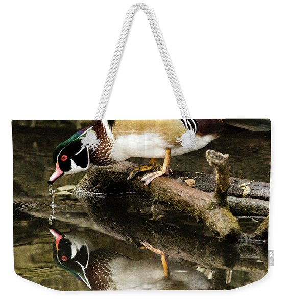 A Sip For You And Me Wildlife Art By Kaylyn Franks Weekender Tote Bag