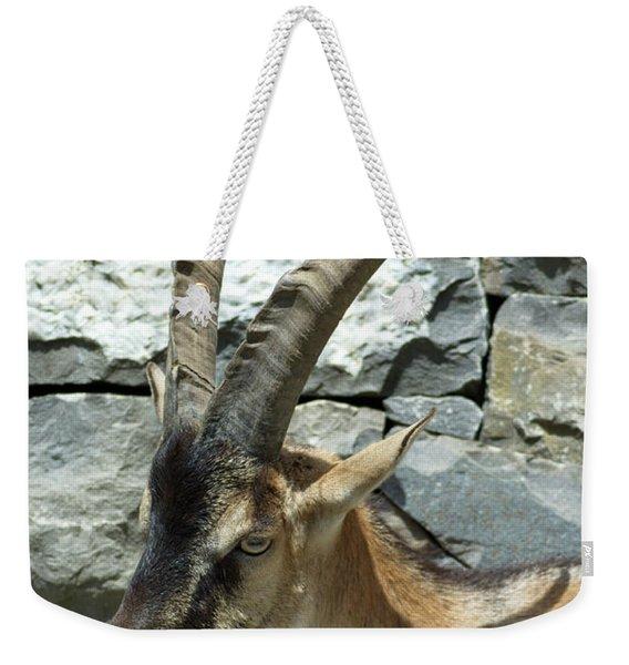 Alpine Ibex Weekender Tote Bag
