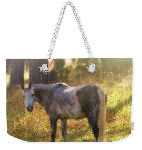Ambient Grace Weekender Tote Bag