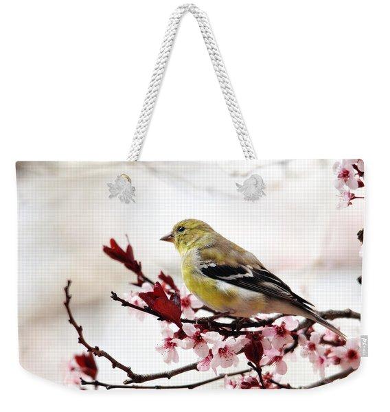 American Goldfinch In Spring Weekender Tote Bag