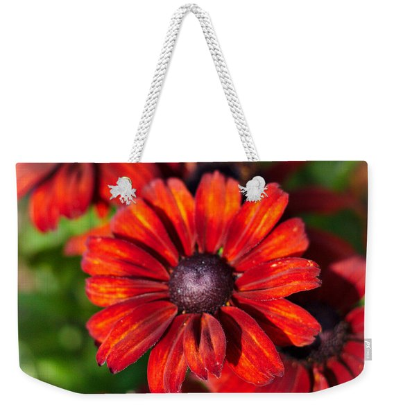 Weekender Tote Bag featuring the photograph Autumn Flowers by Jeremy Hayden