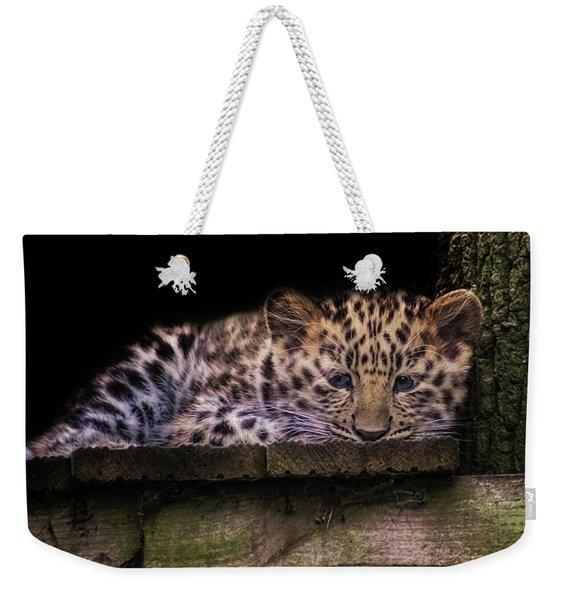 Baby Amur Leopard Weekender Tote Bag