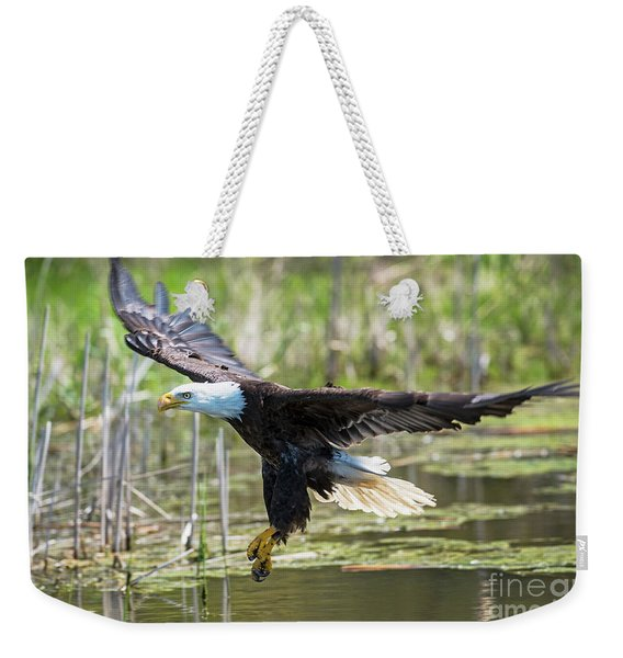 Bald Eagle-3175 Weekender Tote Bag