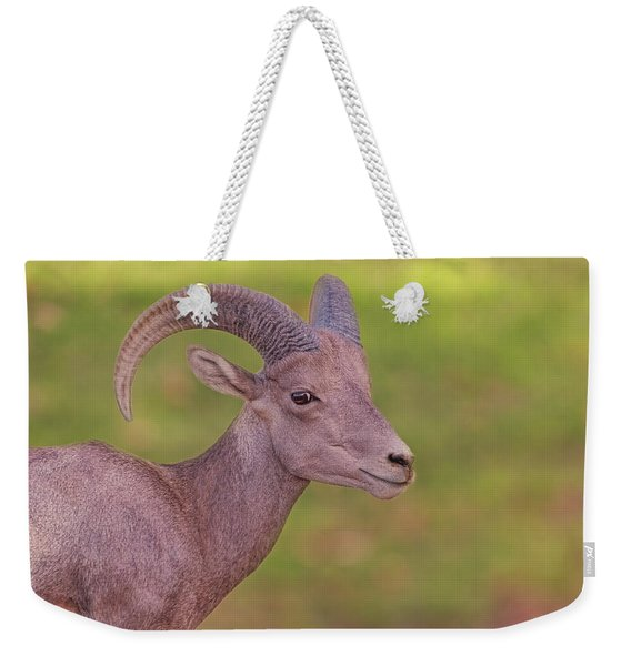 Bighorn Sheep Weekender Tote Bag