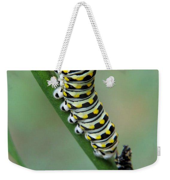 Black Swallowtail Caterpillar Weekender Tote Bag