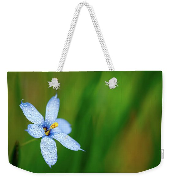 Blue Eyed Grass Flower Weekender Tote Bag
