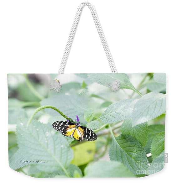 Weekender Tote Bag featuring the photograph Tiger Butterfly by Richard J Thompson