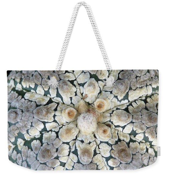 Cactus 2 Weekender Tote Bag