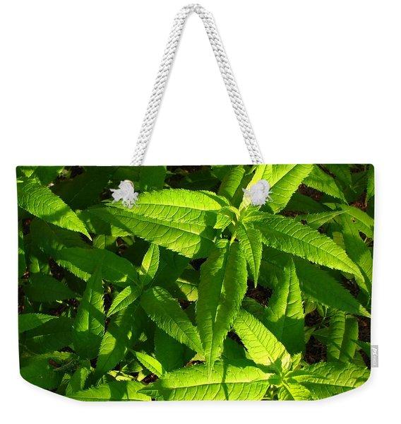 Covering Weekender Tote Bag