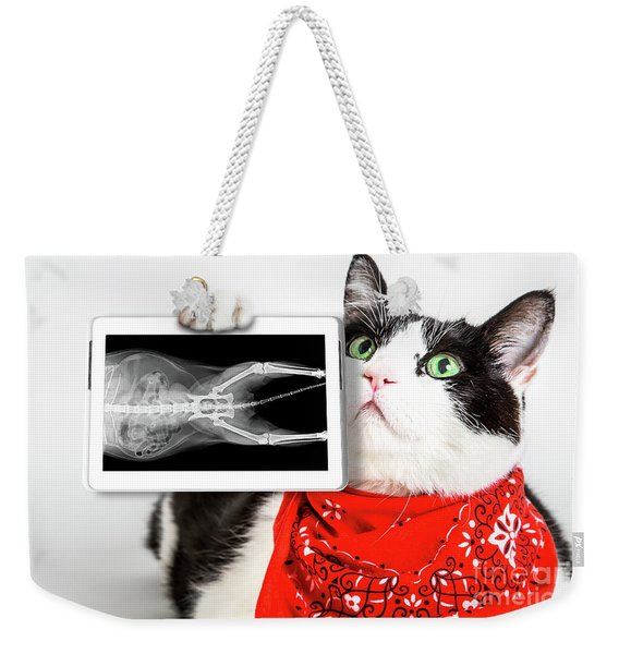 Weekender Tote Bag featuring the photograph Cat With X Ray Plate by Benny Marty