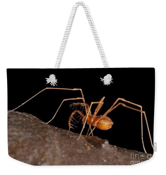 Cave Harvestman Weekender Tote Bag