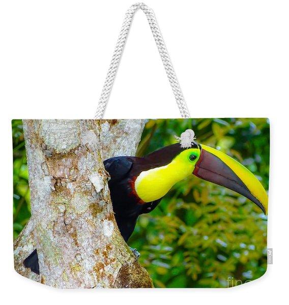 Chestnut-mandibled Toucan Weekender Tote Bag