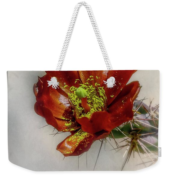 Cholla Cactus Weekender Tote Bag