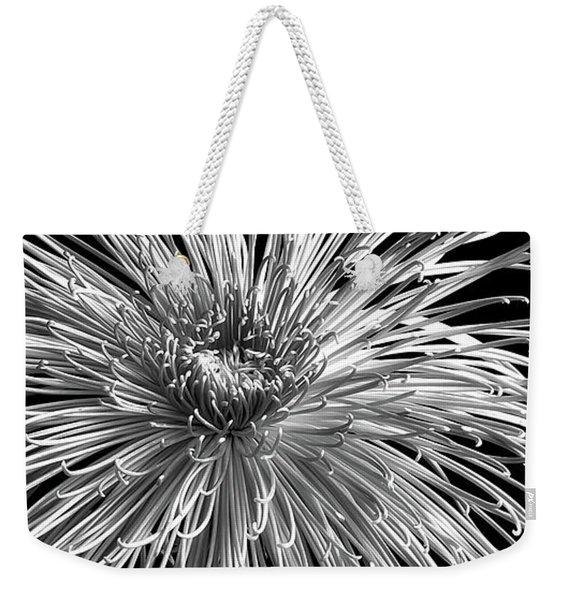 Chrysanthemum 'pink Splendor' Weekender Tote Bag