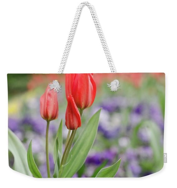 City Park Weekender Tote Bag