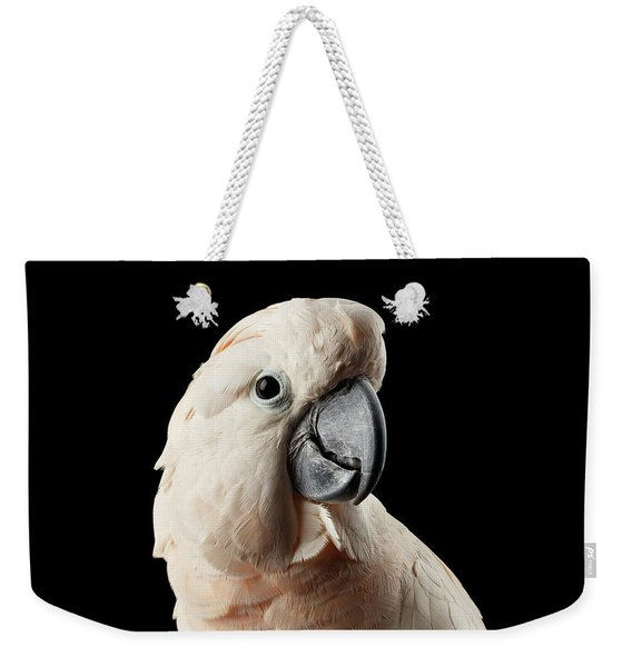 Closeup Head Of Beautiful Moluccan Cockatoo, Pink Salmon-crested Parrot Isolated On Black Background Weekender Tote Bag