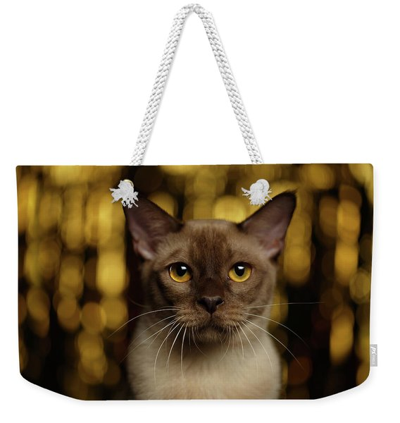 Closeup Portrait Burmese Cat On Happy New Year Background Weekender Tote Bag