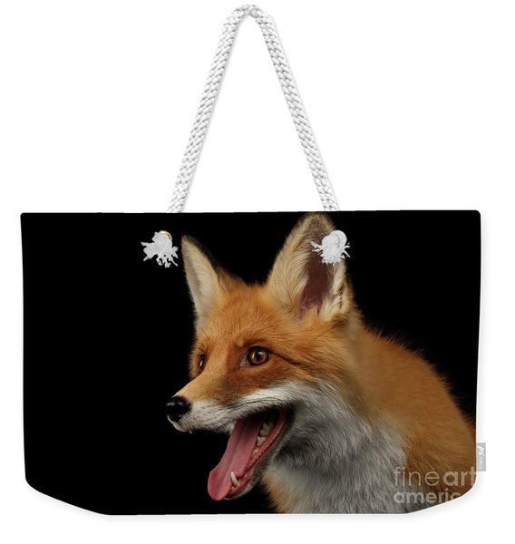Closeup Portrait Of Smiled Red Fox Isolated On Black  Weekender Tote Bag