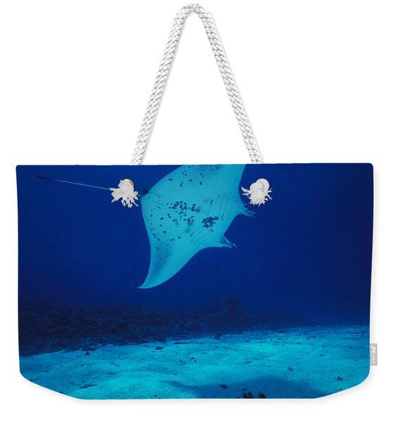 Common Manta Ray Weekender Tote Bag