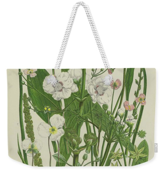 Common Star Fruit, Greater Water Plantain And Other Plants Weekender Tote Bag