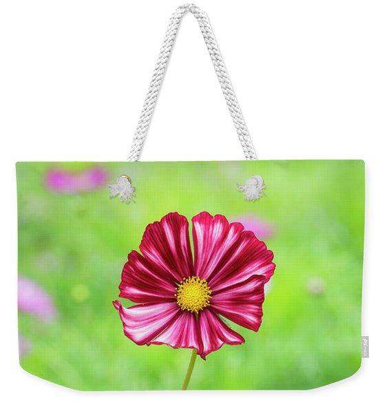 Cosmos Velouette Weekender Tote Bag