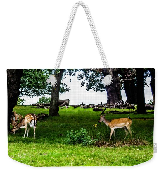Deer In The Park Weekender Tote Bag