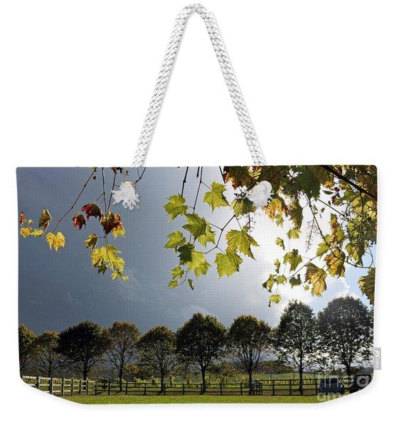Denbies Vineyard Surrey Uk Weekender Tote Bag
