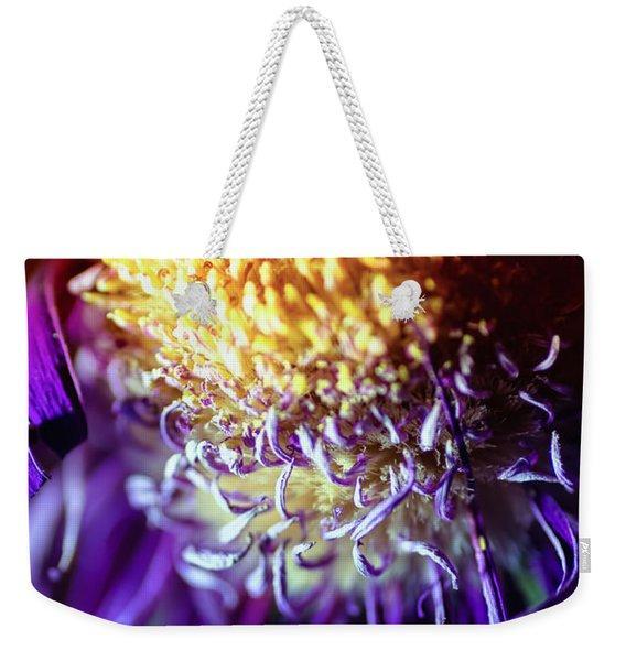 Dying Purple Chrysanthemum Flower Background Weekender Tote Bag