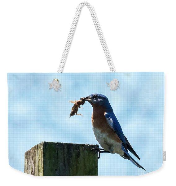 Eastern Bluebird Weekender Tote Bag