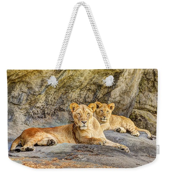 Female Lion And Cub Hdr Weekender Tote Bag