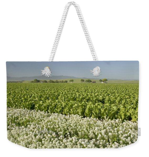 Field Of Organic Lettuce Weekender Tote Bag