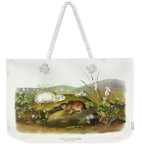 Fox Squirrel Weekender Tote Bag