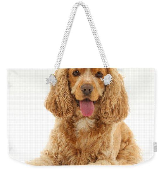 Golden Cocker Spaniel Dog Weekender Tote Bag