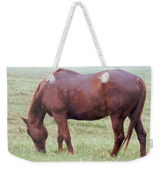 Grazing Weekender Tote Bag