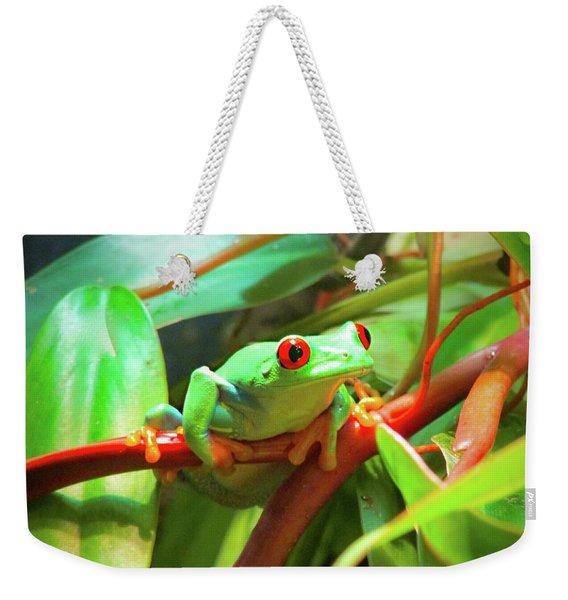 Hangin' In There Weekender Tote Bag
