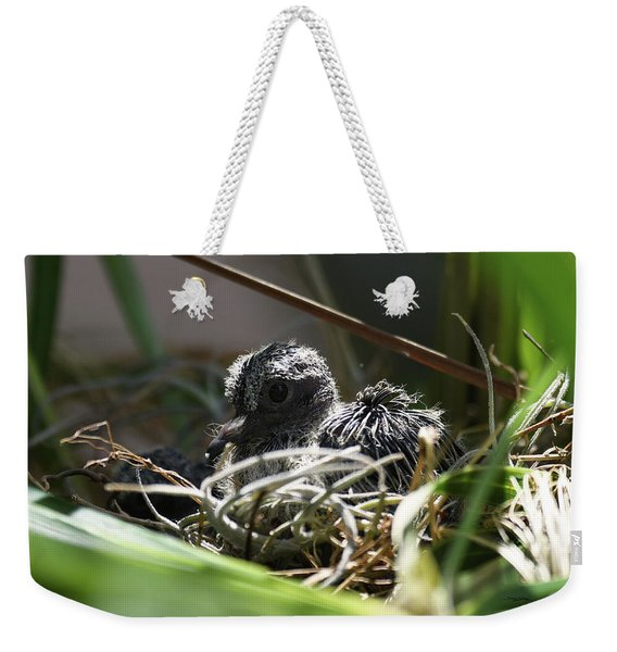 Weekender Tote Bag featuring the photograph Hello by Sally Sperry